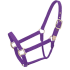 Hi-Brow Yearling Halter