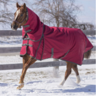 Diablo Winter Blanket w/ Neck