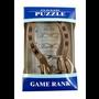 Horseshoe Puzzle Game