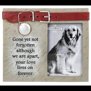 Gone but not Forgotten 4 X 6 Pet Memorial Frame