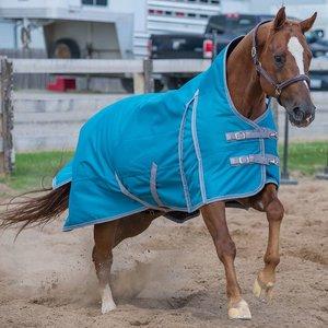 Canadian Horsewear Meridian Storm 160gm Blanket