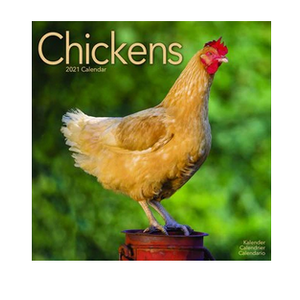 Chickens Wall Calendar 2021
