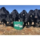 CattleActive CattlActive 18% Calving/Breeding Tub, 250lb