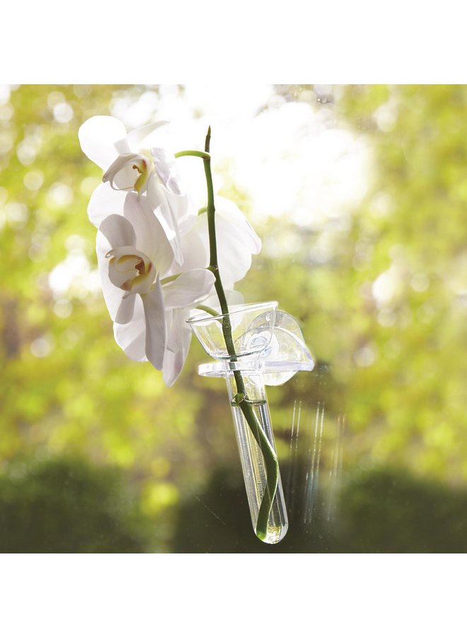 Wall Flower Hanging Vase