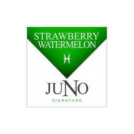 Juno Replacement Pods Strawberry Watermelon 18mg