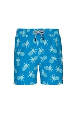 Tom & Teddy Tom & Teddy Pineapple Swim Trunks
