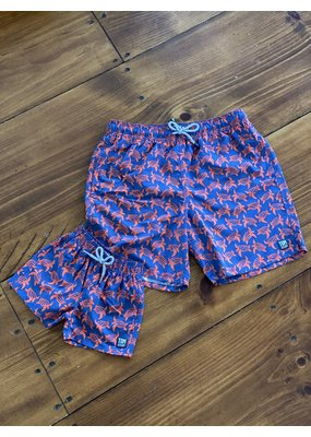 Tom & Teddy KIDS Turtle Swim Trunks