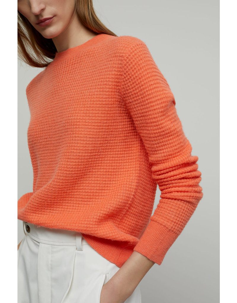 Closed Closed Waffle Knit Sweater