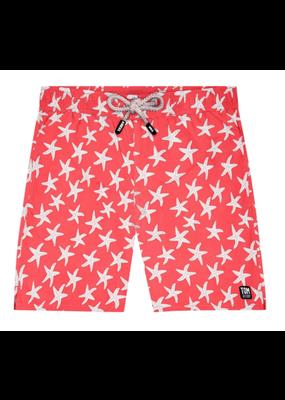 Tom & Teddy Starfish Swim Trunk