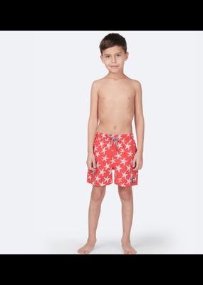 Tom & Teddy Starfish Boys Swim Trunk