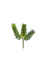 Pearl Succulent Pick