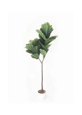 Fiddle Leaf Tree Faux Medium
