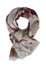 FRAAS Study in Botany Scarf Grass