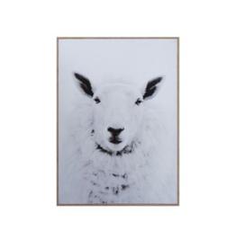 Sheep On Framed Canvas Wall Art