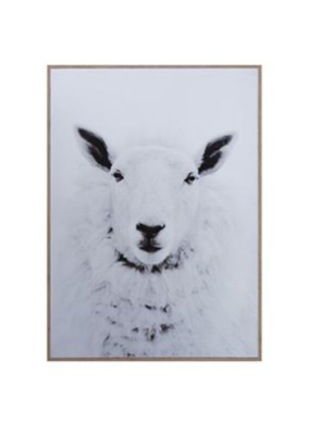 Sheep On Framed Canvas Wall Art