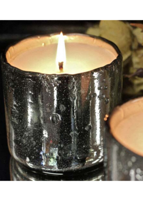 himalayan trading post Himalayan Silver Tumbler Candle Ginger Patchouli