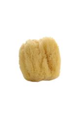 lothantique Natural Sea Sponge Large