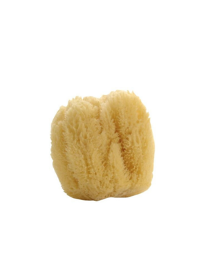lothantique Natural Sea Sponge Large