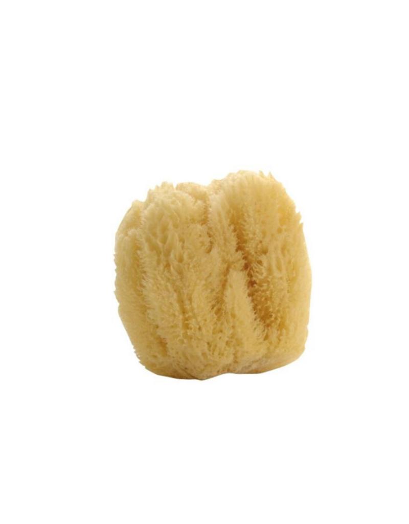 Natural Sea Sponge Large