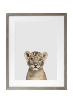 Baby Lion Framed Art 16x20