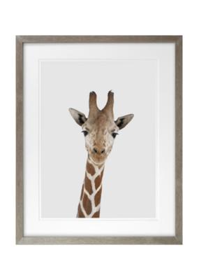 Giraffe Head Framed Art 16x20