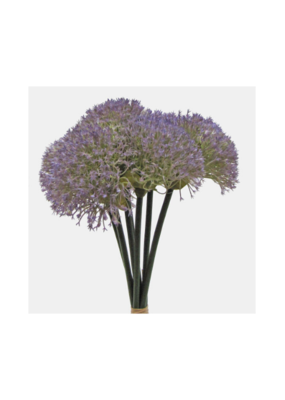 Yarrow Stems Bouquet Purple