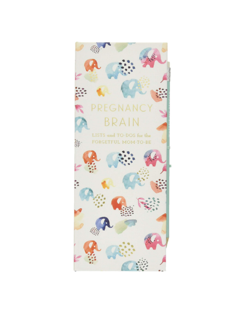 Pregnancy Brain Book