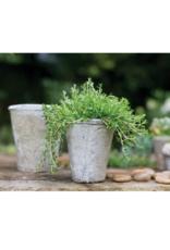 Antique White Pot Medium