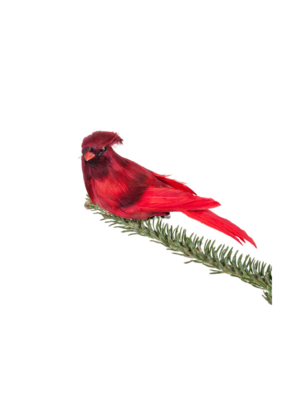 Red Feather Cardinal Clip