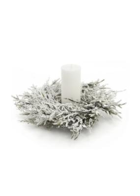 "12"" Frosted Snow Cedar Wreath"