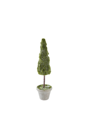 Topiary Tree Small