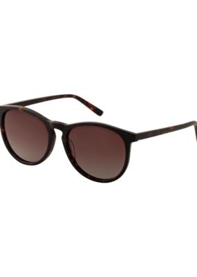 PILGRIM Sahara Sunglasses in Brown by Pilgrim