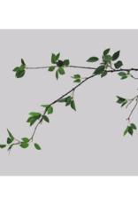 Mini Ficus Leaf Spray