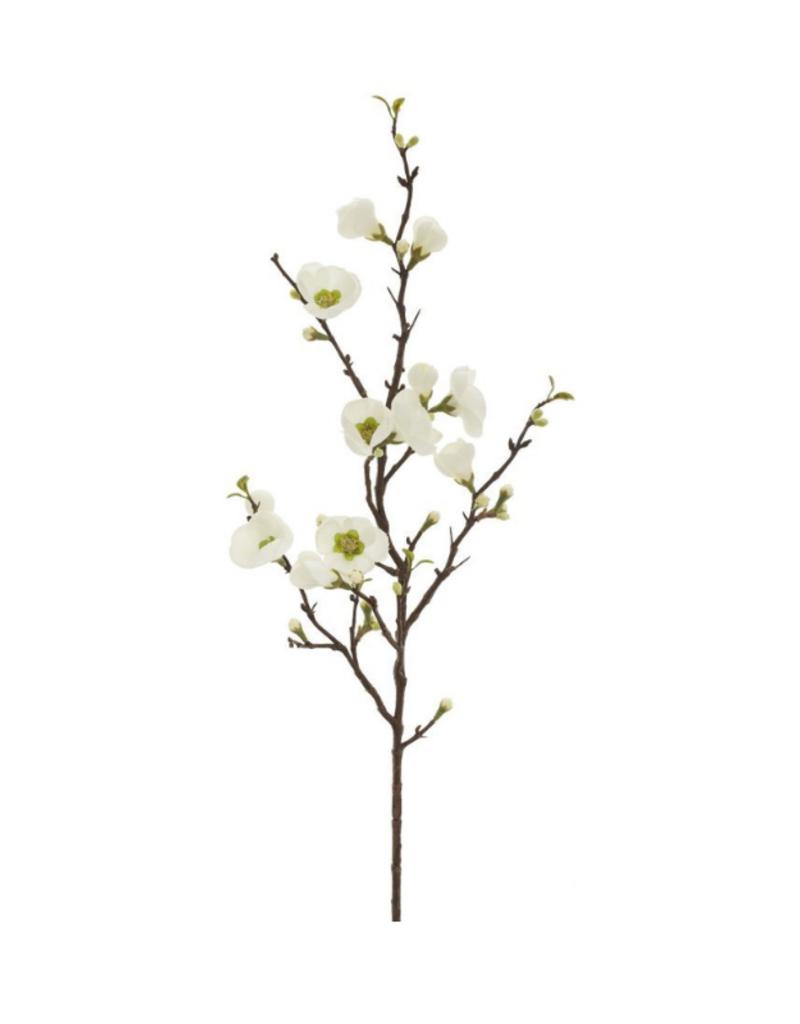 Quince Blossom Spray