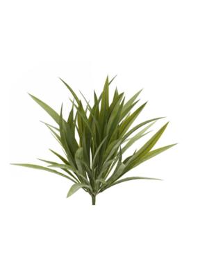 Wild Grass Bush