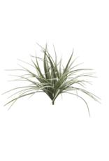 """Grass Bush 21.5"""""""