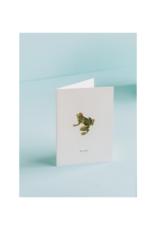 Believe Frog Card