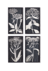 Napa Home & Garden Monochrome Queen Anne's Lace Prints