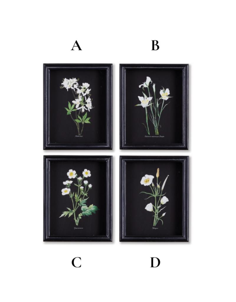 Perennial Petite Art Prints