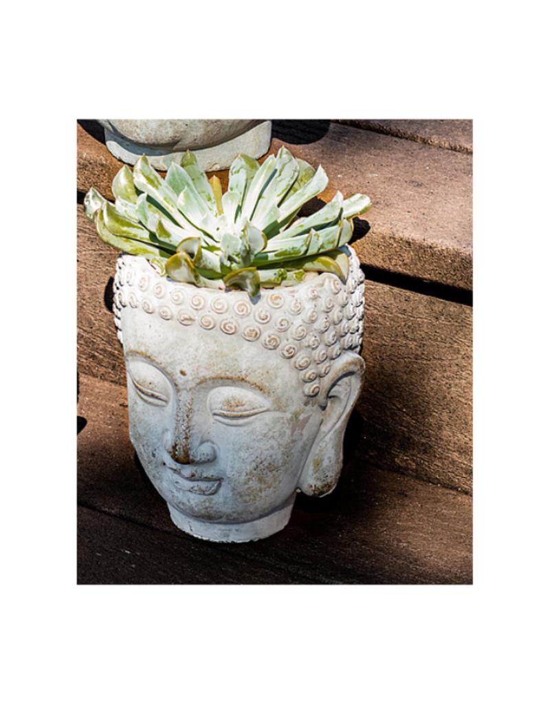 Small Buddha Head Planter