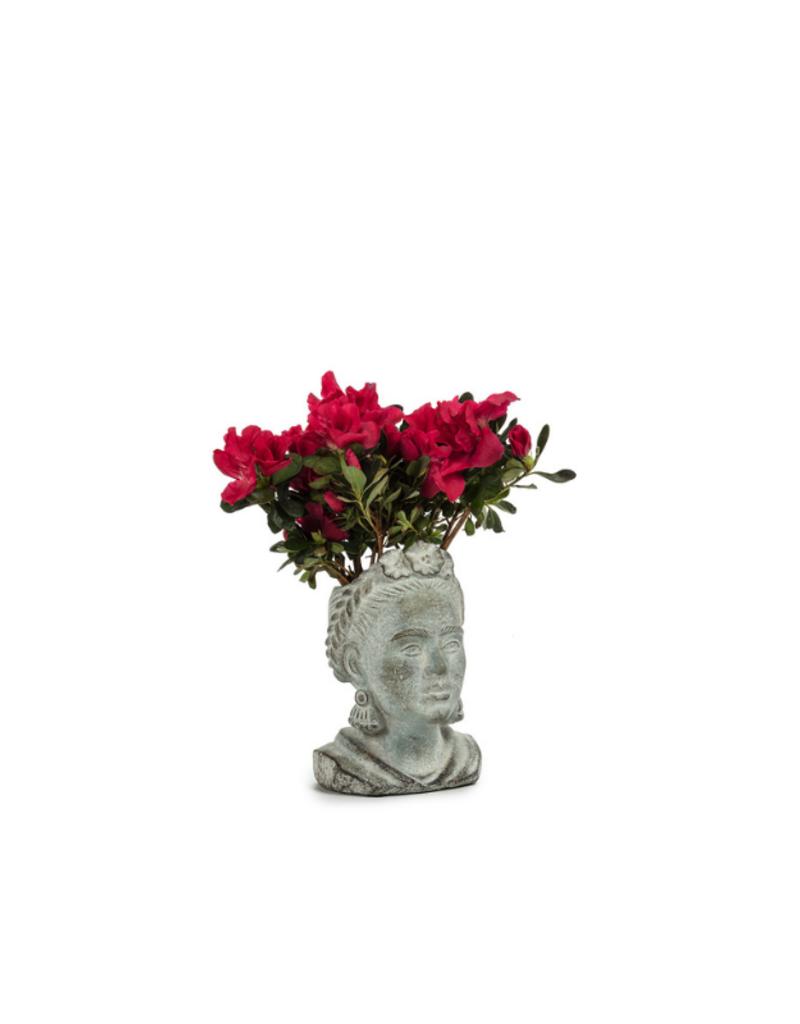 Frida Head Planter Extra Small