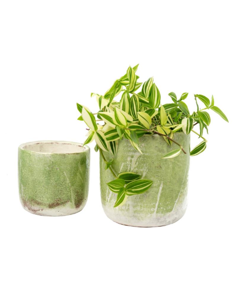 Palette Pot Lime