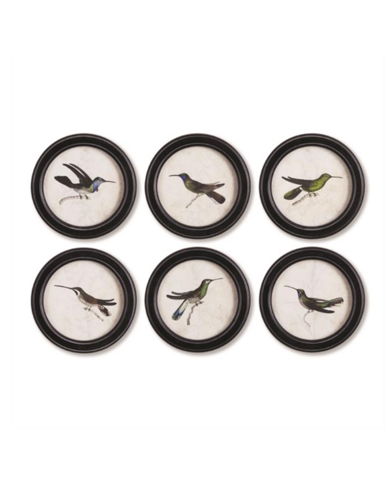 Hummingbird Round Petite Art Prints