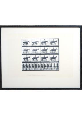 Horse & Rider II Art Print