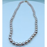 """Necklace Pink Freshwater Pearls 7.24mm 16"""" 219120107"""