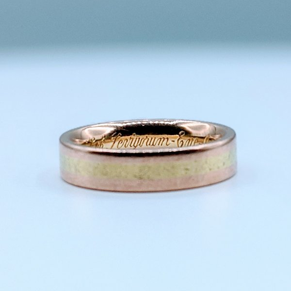 Ring Two-Tone 5.5mm 18kr sz10 220010022