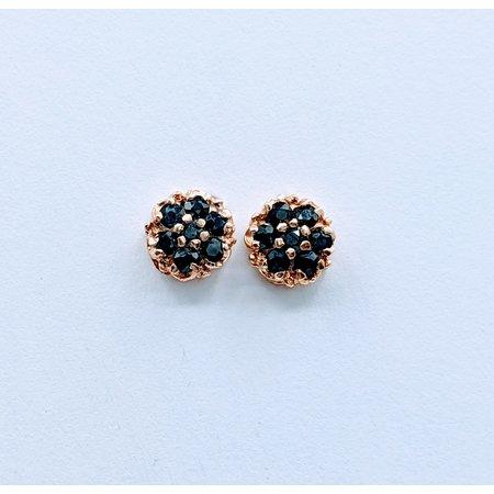 Earrings .33ctw Sapphire 14ky  120030098