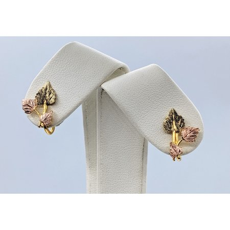 Earrings BHG w/GF Screwbacks 10kBHG 221010033