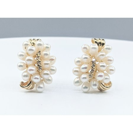 Earrings .06ctw Round Diamonds 4mm Pearls 14ky 23x18mm 221090101