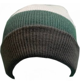 Spacecraft SpaceCraft Beanie Green/Grey